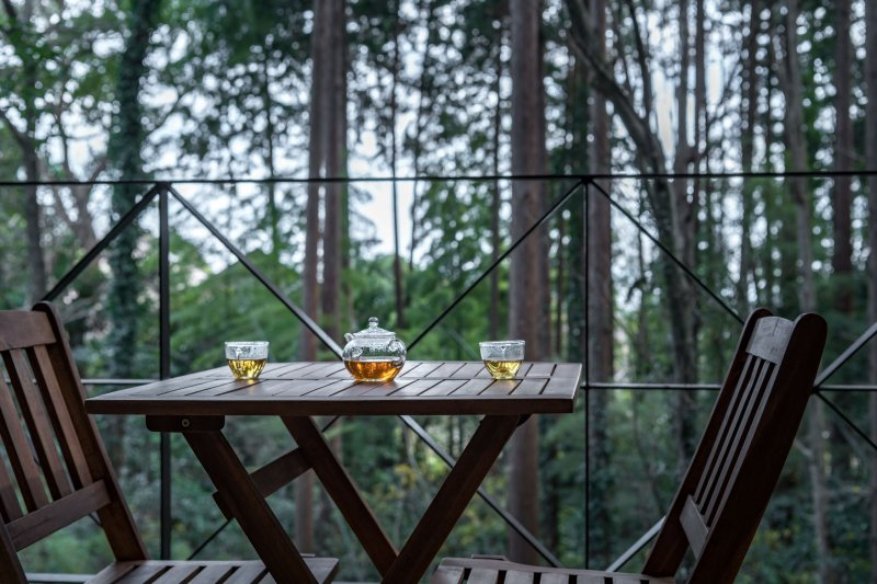 森に面したオープンテラス